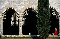 France, Midi Pyrenees, Gers, La Romieu, former 14th century Saint Pierre collegiate church, cloister