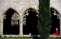 France, Midi Pyrenees, Gers, La Romieu, former 14th century Saint Pierre collegiate church, cloister