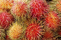 Malaysia, rambutans