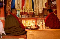 India, Jammu and Kashmir, Ladakh Himalaya, Spiti Valley, praying at Kee Buddhist Monastery