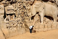 India, Tamil Nadu, Mahabalipuram, Arjuna Penance, Carved Granite Rock Relief of the Descent of the Ganges Myth