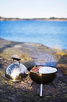 Barbecue Stockholm archipelago Sweden.
