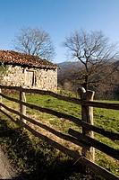 Cabaña de pastores en el pueblo de Soto de Caso  Parque Natural de Redes  Concejo de Caso  Asturias  España