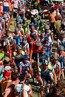 Tour de France bicycle race, 15 stage Pontarlier-Verbier, peloton climbing (July 19th 2009)