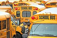 A mosaic of American school buses. New York City