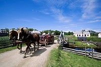 Canada, New Brunswick, the Acadian coast, the Acadian historic village of Caraquet, carriage