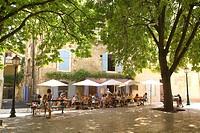 France, Bouches du Rhone, Alpilles, Saint Remy de Provence
