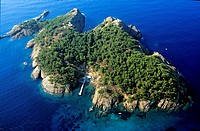 France, Bouches du Rhone, La Ciotat, Green Island aerial view