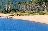 France, Corse du Sud, Ajaccio Gulf, Plage de Chiavari