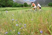 Couple riding bicycles through rural field