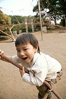 A young boy swinging on a rope in the park (thumbnail)