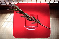 View of a flower stem over red placemat