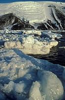 Tidewater glacier and icebergs, Antarctica