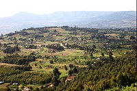 View over upland farming area, on edge of valley, Great Rift Valley, Kenya, october
