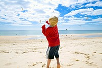 A boy watching the seagulls at the beach, Algarve, Portugal, Europe