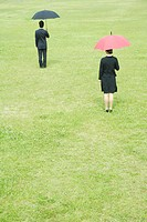 Two businesspeople holding umbrellas, rear view