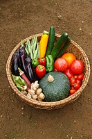 Fresh vegetables in basket, close_up, high angle view
