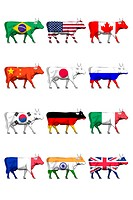 Cows featuring the national flags, illustration
