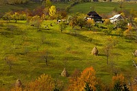 View of traditional farm buildings, hay stooks and montane pasture, Magura, Piatra Craiului Mountains, Southern Carpathians, Romania, autumn