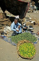 Fruit trader in market, Egypt