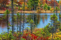 Fall colour at Highland Pond in the Torrance Barrens/Dark Sky Reserve in Ontario´s Muskoka Region