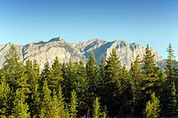 Rocky Mountains near Kananaskis, Alberta, Canada, trees, forest, Rockies, Geological formation