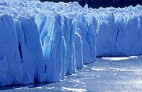 Perrito Moreno Glacier, Parque Nacional Los Glaciares, Patagonia, Argentina