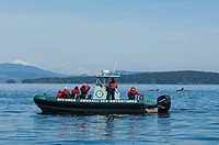 Whale watching boat, Emerald sea adventures, Gulf Islands, BC, Canada