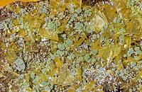 Mimetite, a secondary ore of Lead, with Wulfenite, Mexico.
