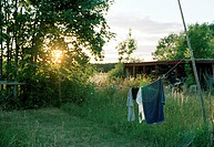 Clothes drying in a garden.