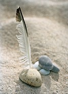 Stones and feather in sand.