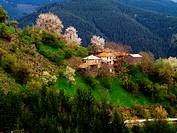 Village Gela , BulgariaGela  is a village in the south of Bulgaria and lies in the central Rhodope Mountains