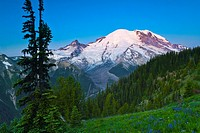 Sunrise on Mount Rainier from Silver Forest Trail