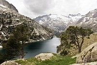 Estany Negre, Aig&#252;estortes National Park, Lleida, Catalonia, SPAIN
