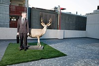 Businessman with deer