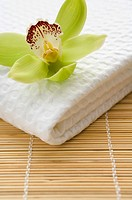 Orchid flower on towel (thumbnail)