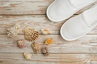 Seashells and slippers