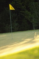 Golf course and golf flag in hole