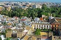 View of the city from the Giralda tower, Seville, Andalusia, Spain