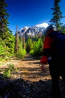Hiker on the Crow Pass Trail near Eagle River, Chugach State Park, Southcentral Alaska, Summer