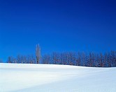 Snow covered rural landscape