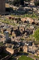 roman forum, rome, lazio, italy