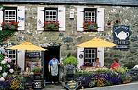 Tearoom in the village of Criccieth. Wales, great britain