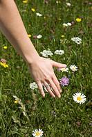woman running hand through grass