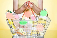 Woman with basic groceries in basket