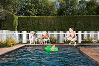 Family having fun in the pool