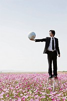 businessman standing on ladder in cosmos flowers field holding globe