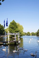 River Thames, Windsor, Berkshire, England, United Kingdom, Europe