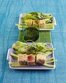 Seared tuna with sesame seeds and cucumber salad