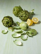 Artichokes and artichoke leaves with lemon halves